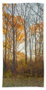 Golden Autumn Beach Towel