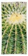 Golden Ball Cactus Beach Towel
