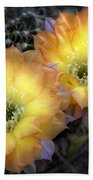 Golden Cactus Flowers  Beach Towel