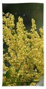 Golden Flora 2013 Beach Towel