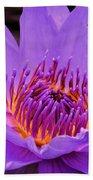 Golden Glow Of The Lavender Lotus Beach Towel