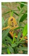 Golden Grasshopper Beach Towel