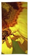 Golden Hoverfly 2 Beach Towel