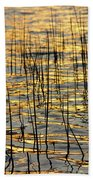 Golden Lake Ripples Beach Towel by James BO  Insogna