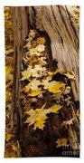 Golden Leaves Beach Towel