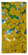 Golden Leaves Of Autumn Beach Towel