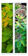 Golden Leaves To Purple Seeds Beach Towel