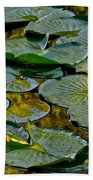 Golden Lilly Pads Beach Towel