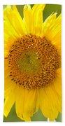 Golden Moment - Sunflower Beach Towel