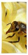 Golden Nectar  Beach Towel
