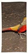 Golden Pheasant Pair Beach Towel