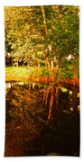 Golden Pond 4 Beach Towel
