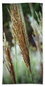 Golden Reeds Beach Towel