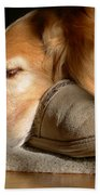 Golden Retriever Dog With Master's Slipper Beach Towel by Jennie Marie Schell