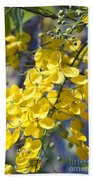 Golden Shower Tree - Cassia Fistula - Kula Maui Hawaii Beach Towel