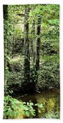 Golden Silence In The Forest Beach Towel