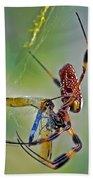 Golden Silk Orb With Blue Dragonfly Beach Towel