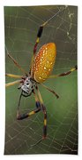 Golden Silk Spider 9  Beach Towel