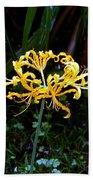 Golden Spider Lily Beach Towel
