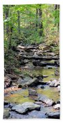 Golden Spring Waters Of Hurricane Branch Beach Towel
