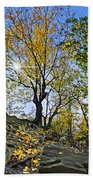 Golden Tree Beach Towel
