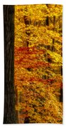 Golden Trees Glowing Beach Towel