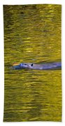 Golden Waters Beach Towel