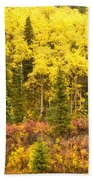 Golden Yellow Fall Boreal Forest In Yukon Canada Beach Towel