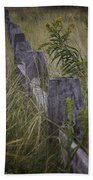 Goldenrod By The Fence Beach Towel