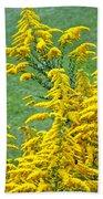 Goldenrod Flowers Beach Towel