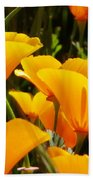 Golden Poppies Beach Towel