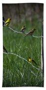 Goldfinch Gathering Beach Towel