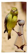 Goldfinch Hanging On 031015ac Beach Towel