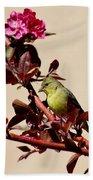 Goldfinch In Tree 031015aa Beach Towel