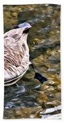 Goose In The Water Beach Towel