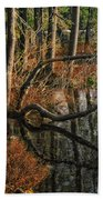 Goose Lake Twilight Beach Towel