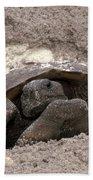 Gopher Tortoise Beach Towel