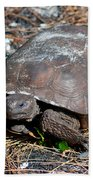 Gopher Turtle Beach Towel