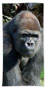 Gorilla135 Beach Towel