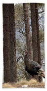 Gould's Wild Turkey IIi Beach Towel