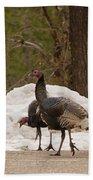 Gould's Wild Turkey Iv Beach Towel