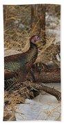 Gould's Wild Turkey Xiii Beach Towel