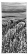 Grain Field Tracks Beach Towel