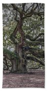 Grand Angel Oak Tree Beach Towel
