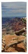 Grand Canyon And Dead Tree 1 Beach Towel