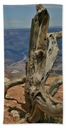 Grand Canyon And Dead Tree 2  Beach Towel