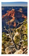 Grand Canyon Branches Beach Towel