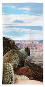 Grand Canyon Squirrel Beach Towel