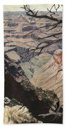 Grand Canyon View Weathered Tree Right Side  Beach Towel