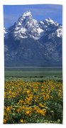 Grand Teton Summer Beach Towel